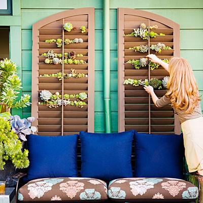 flower-plant-pot-plantation-shutters-2