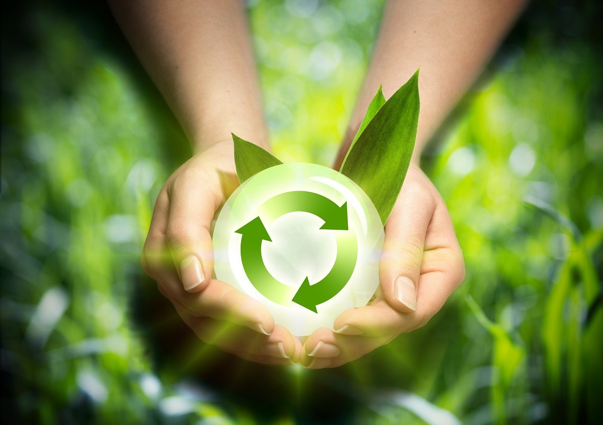 Turn Your Home Green – 6 Ways to Become More Environmentally Friendly