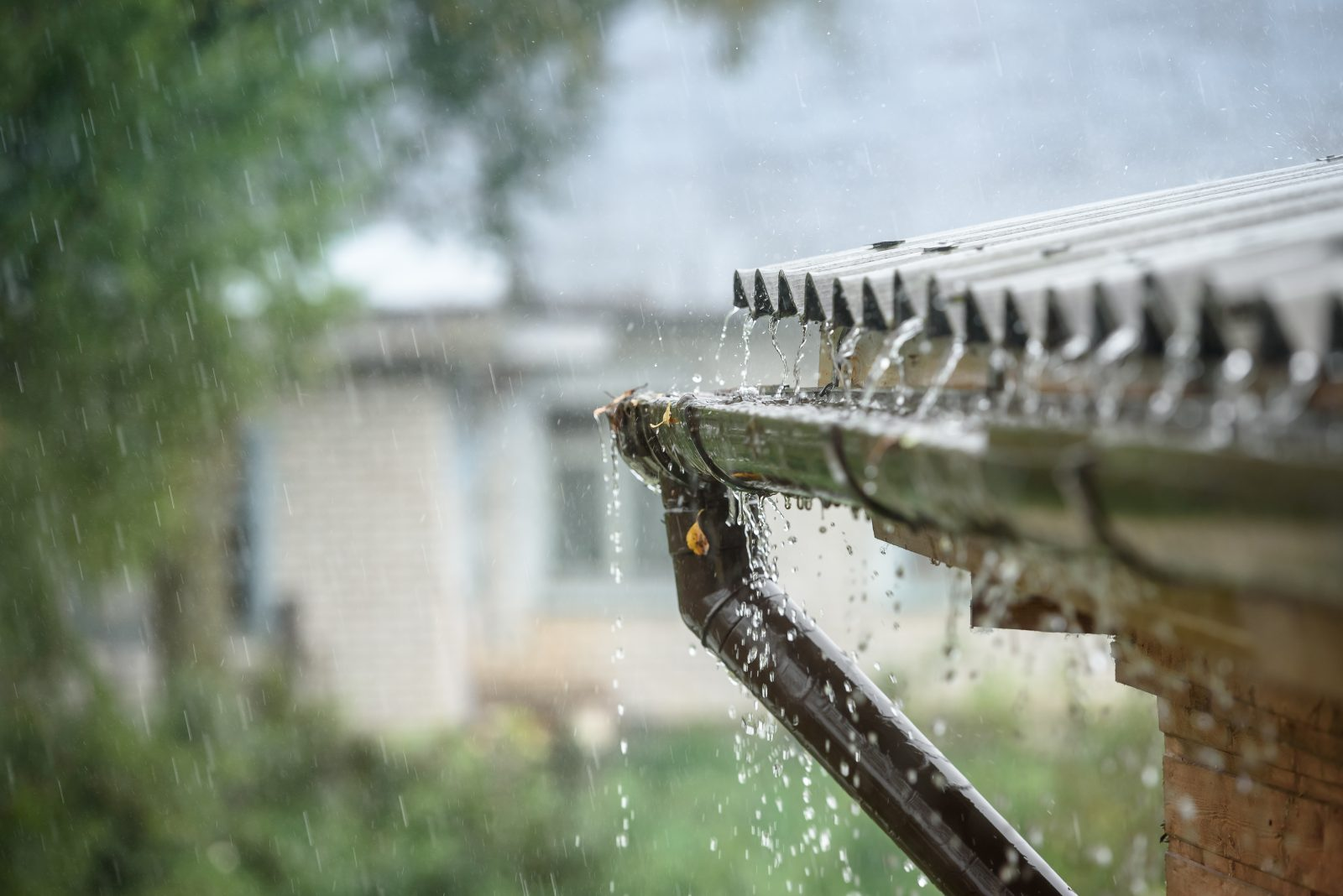 Make Sure You're Covered by your Insurance this Storm Season